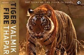 Tiger fire 1