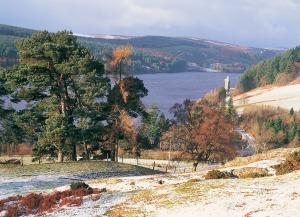 Lake Vyrnwy Powys Scenery