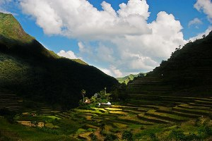 ifugao-rice-terrace3