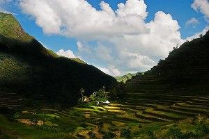 ifugao-rice-terrace3