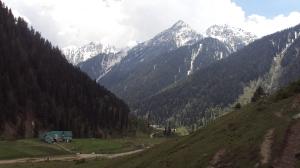 Kashmir 259