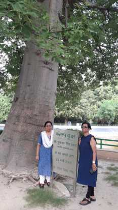 In front of Kalpvruskh Tree